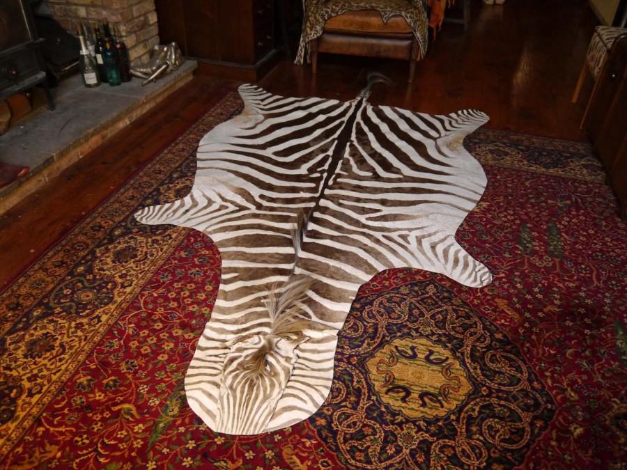 Ref   1412. Taxidermy Lion Skin Rug ...